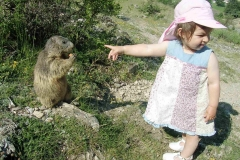 enfant rencontre marmotte