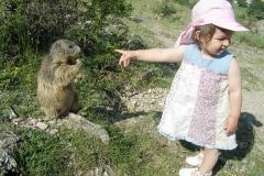 +BM Marmottes1755