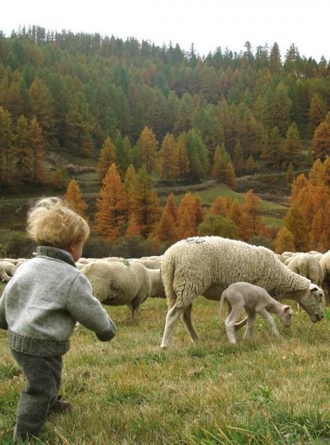 bébé à la campagne rencontre animaux de la ferme