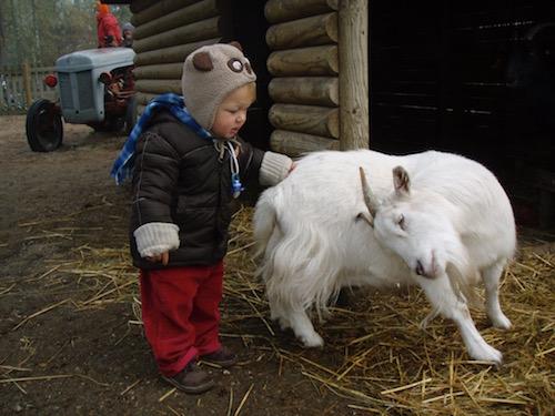bébé avec les animaux de la ferme